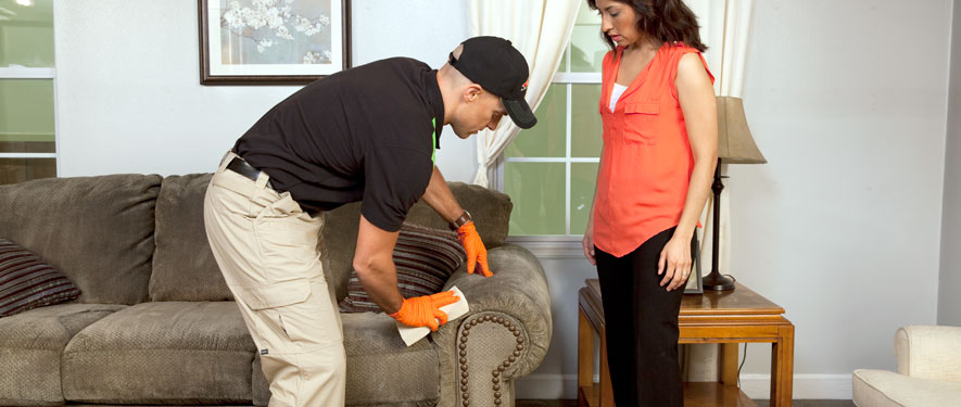 San Jacinto, CA carpet upholstery cleaning